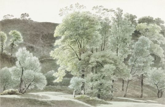 Bomen in de omgeving van Subiaco (trees in the Subiaco area) (1777–1847)