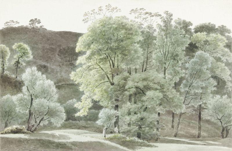 Bomen in de omgeving van Subiaco (trees in the Subiaco area) (1777–1847)
