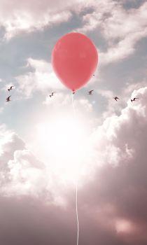 Balloon Sun Birds Clouds