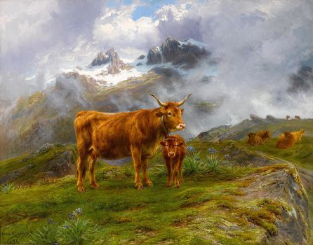 Highland Cattle (1876)
