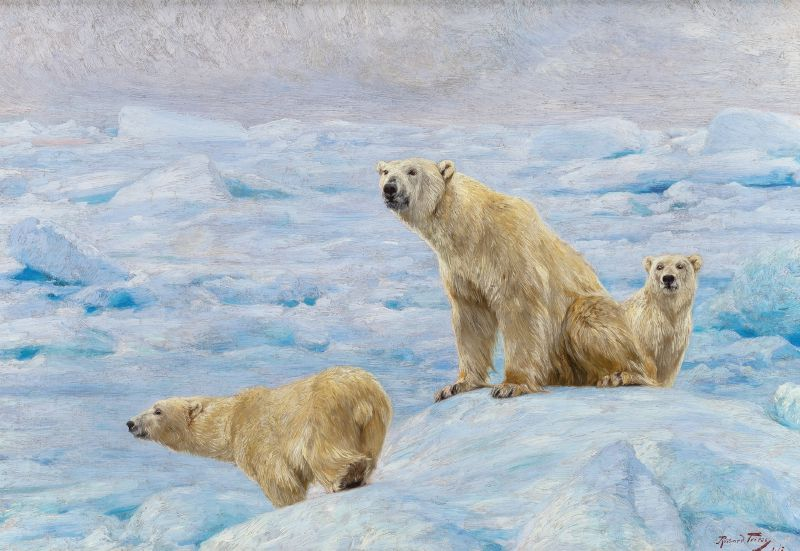Three Polar Bears (1912)
